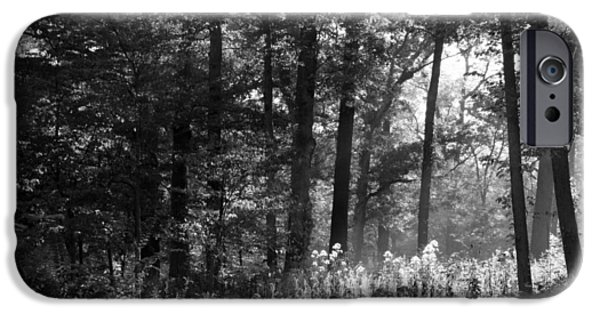 Jordan iPhone Cases - The Forest Comes Alive at Daybreak  iPhone Case by Rosanne Jordan