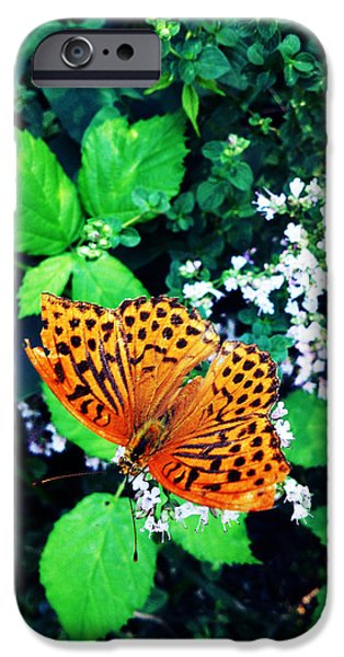 Lucy D iPhone Cases - The Forest Guardian 2 iPhone Case by Lucy D