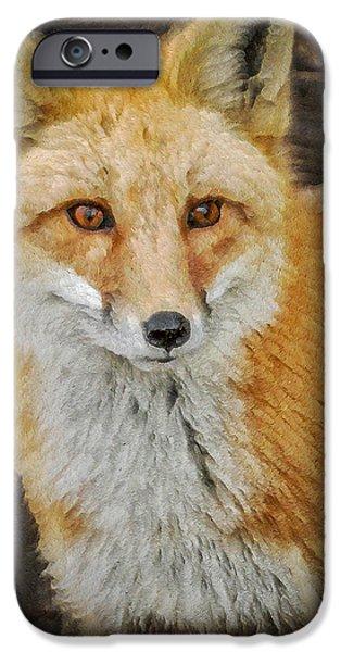 Fox Digital iPhone Cases - The Fox 8 iPhone Case by Ernie Echols