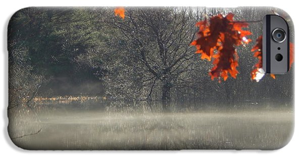 Oak Creek iPhone Cases - The Fringe of Fall iPhone Case by Karen Cook