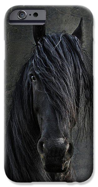 Animals Photographs iPhone Cases - The Frisian iPhone Case by Joachim G Pinkawa