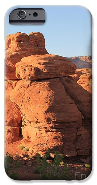 Slickrock iPhone Cases - The Frog Sentinel  iPhone Case by Tonya Hance