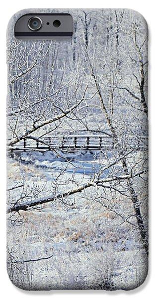 The Frozen Bridge iPhone Case by Maria Angelica Maira