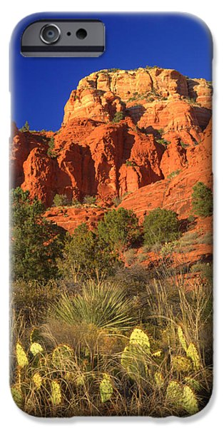 Sedona iPhone Cases - The Glory of the Desert Red Rocks 1 iPhone Case by Douglas Barnett
