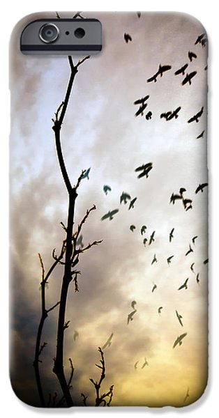Dreamscape iPhone Cases - The Gods Laugh When The Winter Crows Fly iPhone Case by Bob Orsillo