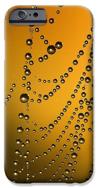 The gold web iPhone Case by Odon Czintos