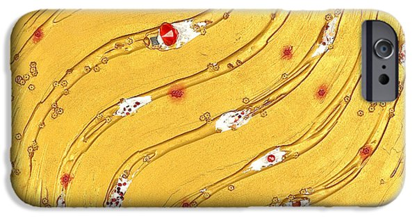 Rose Reliefs iPhone Cases - The golden flow in a bed of roses iPhone Case by Heidi Sieber
