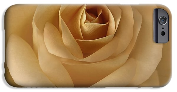Gold Rose iPhone Cases - The Golden Rose Flower iPhone Case by Jennie Marie Schell