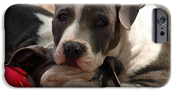 Puppy Digital iPhone Cases - The Good Pillow iPhone Case by Camille Lopez