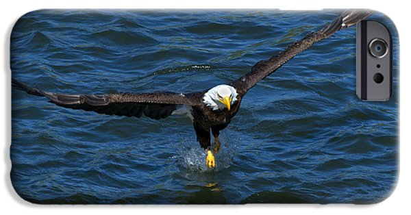 Eagle Photographs iPhone Cases - The Grab iPhone Case by Mike Dawson