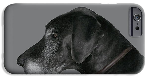 Snake iPhone Cases - The Great Dane iPhone Case by Barbara S Nickerson