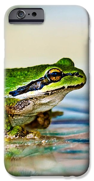 The Green Frog iPhone Case by Robert Bales