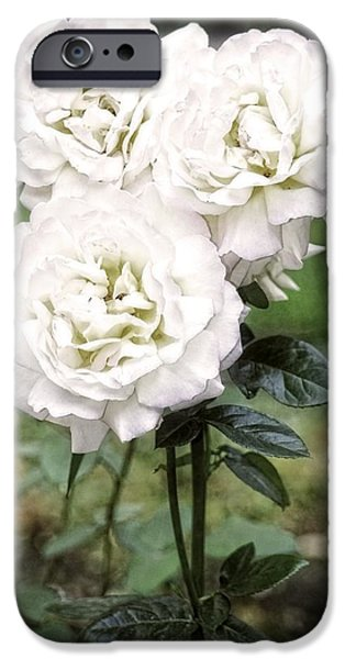 United iPhone Cases - The Grotto Rose Garden iPhone Case by Image Takers Photography LLC - Carol Haddon