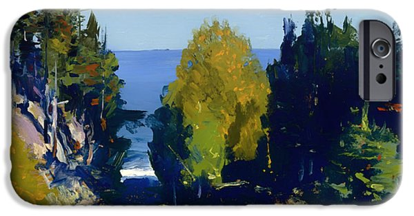 Maine Landscapes Paintings iPhone Cases - The Grove at Monhegan iPhone Case by George Bellows