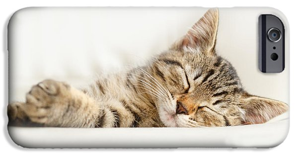 Sleepy iPhone Cases - The Happy Kitten iPhone Case by Roeselien Raimond