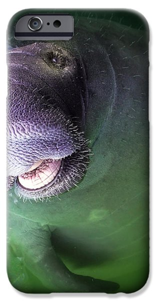 THE HAPPY MANATEE iPhone Case by KAREN WILES