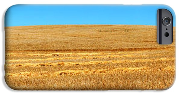 Harvest iPhone Cases - The Harvest iPhone Case by Bill  Robinson