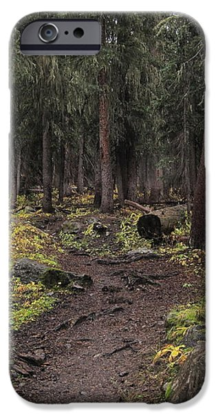 The High Forest iPhone Case by Eric Glaser