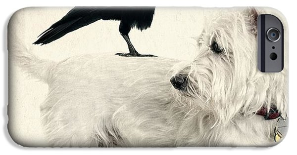 Black Dog iPhone Cases - The Hitchhiker iPhone Case by Edward Fielding