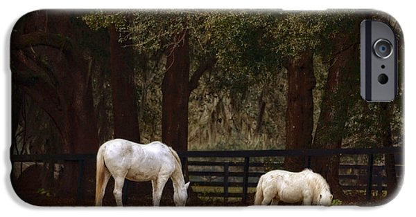 The Horse iPhone Cases - The Horse and The Pony - Standard Size iPhone Case by Mary Machare