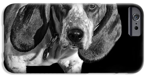 Purebred Digital Art iPhone Cases - The Hound iPhone Case by Camille Lopez