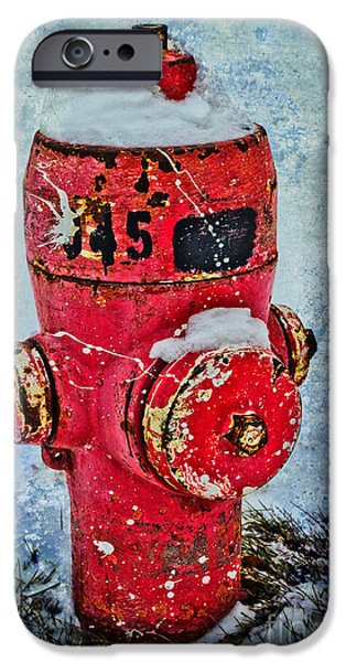 Fire Hydrant iPhone Cases - The Hydrant iPhone Case by Tara Turner