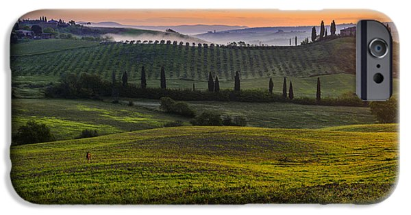 Tuscan Landscapes iPhone Cases - The intruder iPhone Case by Yuri Santin