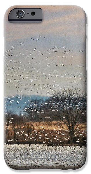 Creek iPhone Cases - The Journey Begins iPhone Case by Lori Deiter