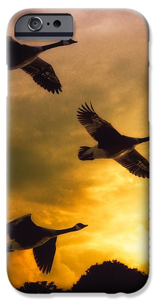 Metaphysical iPhone Cases - The Journey South iPhone Case by Bob Orsillo