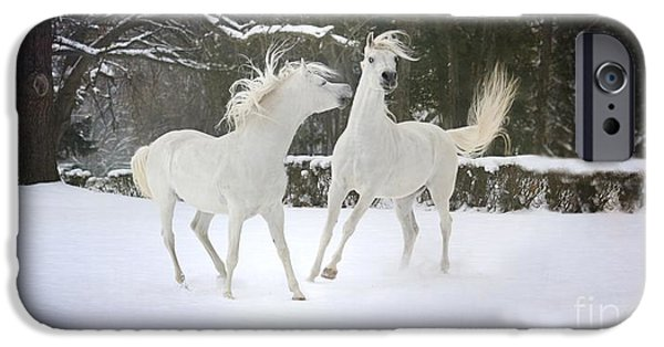 Horse Pyrography iPhone Cases - The Joy Of Winter iPhone Case by Dorota Kudyba
