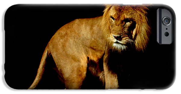 Lion Photographs iPhone Cases - The King iPhone Case by Martin Newman