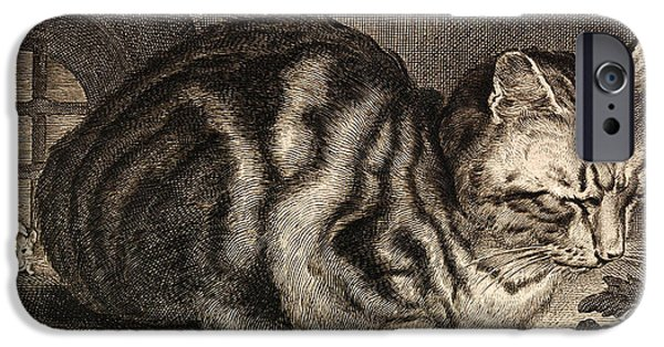 The Tiger iPhone Cases - The Large Cat  iPhone Case by Celestial Images