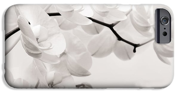 Moth iPhone Cases - The Last Orchid iPhone Case by Wim Lanclus