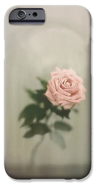 One iPhone Cases - The Last Rose iPhone Case by Trish Mistric