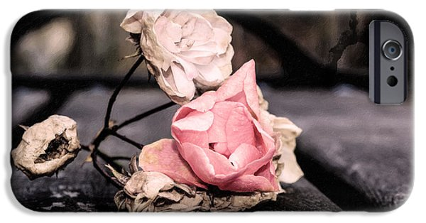 Ruin Mixed Media iPhone Cases - The last wilted roses iPhone Case by Toppart Sweden