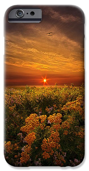 Field. Cloud iPhone Cases - The Light of Day iPhone Case by Phil Koch