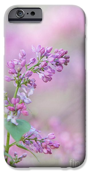 Kaypickens.com iPhone Cases - The Lilac iPhone Case by Kay Pickens