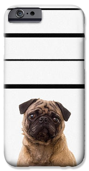 The Line Up iPhone Case by Edward Fielding