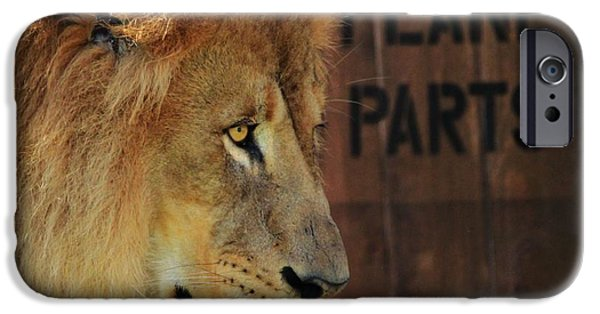 Love The Animal iPhone Cases - The Lion King iPhone Case by Dan Sproul