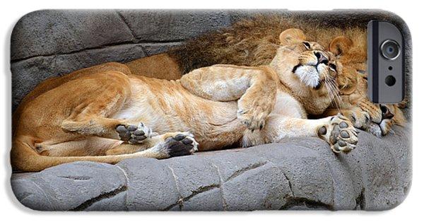 Hamburg Digital Art iPhone Cases - The Lion Sleeps Tonight iPhone Case by Eva Kaufman