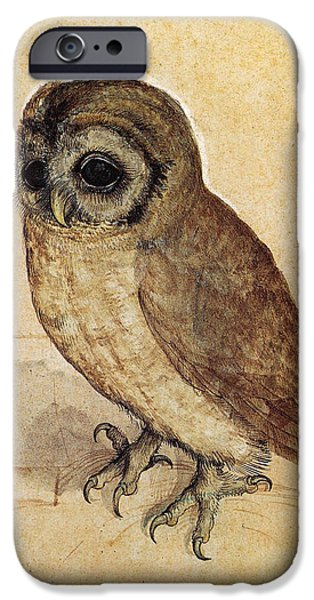 Business Drawings iPhone Cases - The Little Owl 1508 iPhone Case by Albrecht Durer