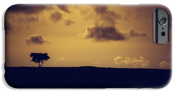 A Summer Evening Landscape iPhone Cases - The loneliness of a moorland tree iPhone Case by Chris Fletcher