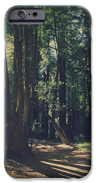 Fort iPhone Cases - The Long Way iPhone Case by Laurie Search