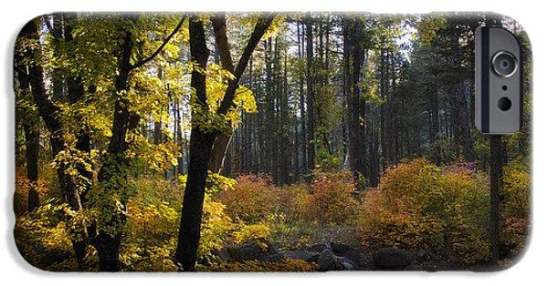 Oak Creek iPhone Cases - The Magic of Autumn   iPhone Case by Saija  Lehtonen