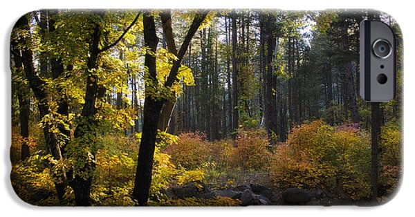Sedona iPhone Cases - The Magic of Autumn   iPhone Case by Saija  Lehtonen