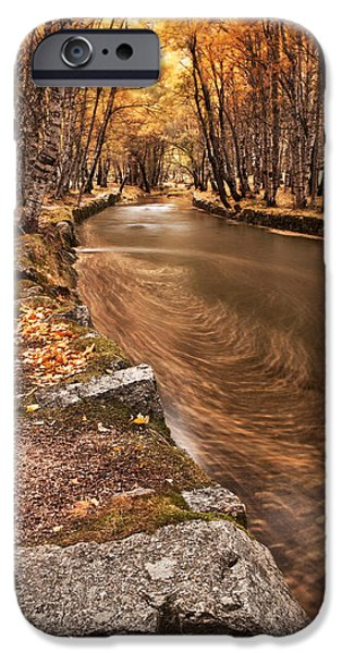 Fall iPhone Cases - The magic of fall iPhone Case by Jorge Maia
