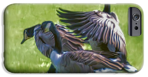 Canadian Geese Paintings iPhone Cases - The Magnificent Canada Geese iPhone Case by Ted Guhl
