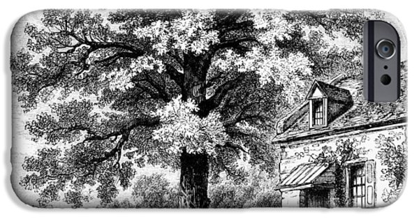 Lincoln iPhone Cases - The Magnolia Tree iPhone Case by Granger