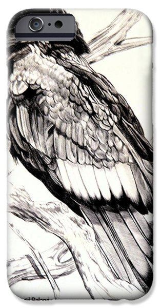 Stellar Drawings iPhone Cases - The Majestic Russian Stellar Eagle iPhone Case by Cheryl Poland
