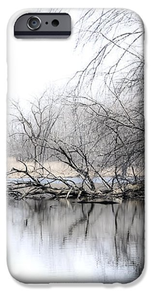 The Marsh iPhone Case by Julie Palencia